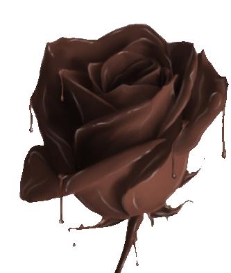 http://www.gurman.caj-kava-cokolada.sk/wp-content/uploads/cokoladakvet.png